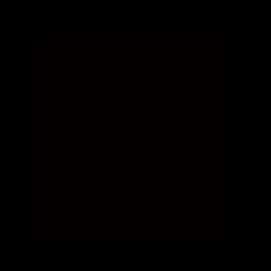 alav_sponsor_rockey